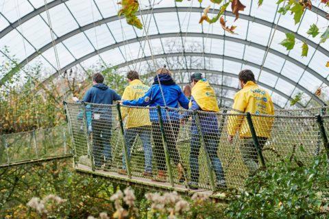 Découvrez Bellerive, un projet inclusif et environnemental