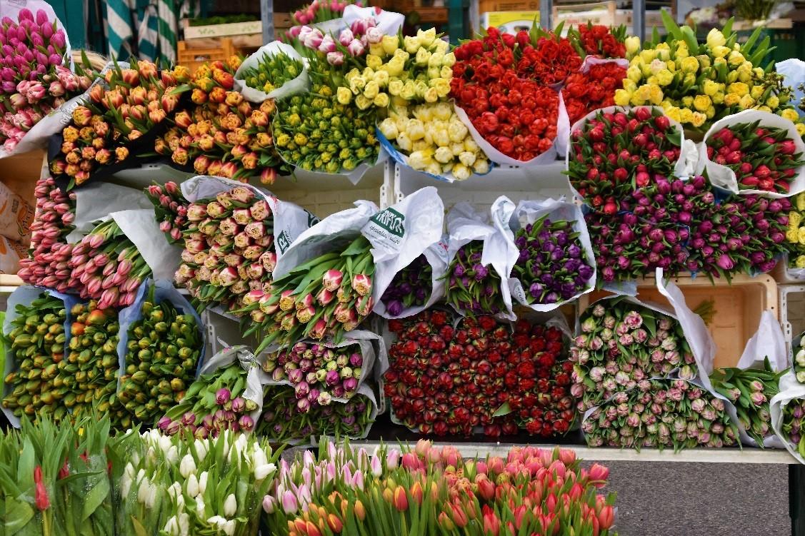 gare aux fleurs